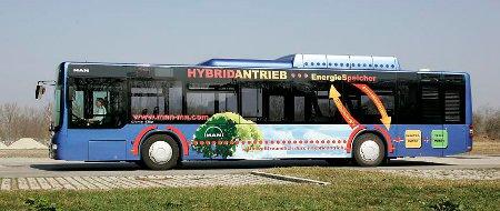 Lions City Hybrid